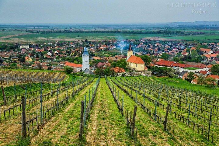 Tokaj Full Day Private Wine Tour from Budapest
