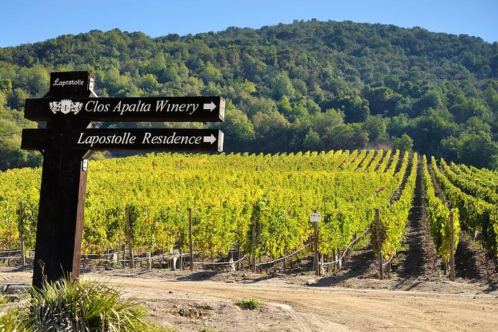 Private Full Day Guided Trip to Colchagua Valley - Visit to 2 Vineyards & Museum