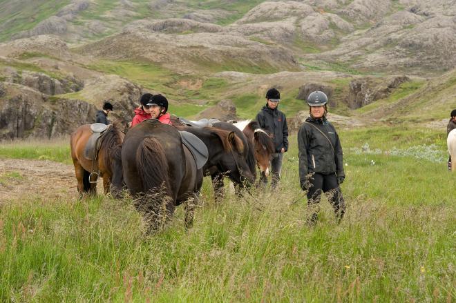 Diving Silfra & Horseback Riding Combo